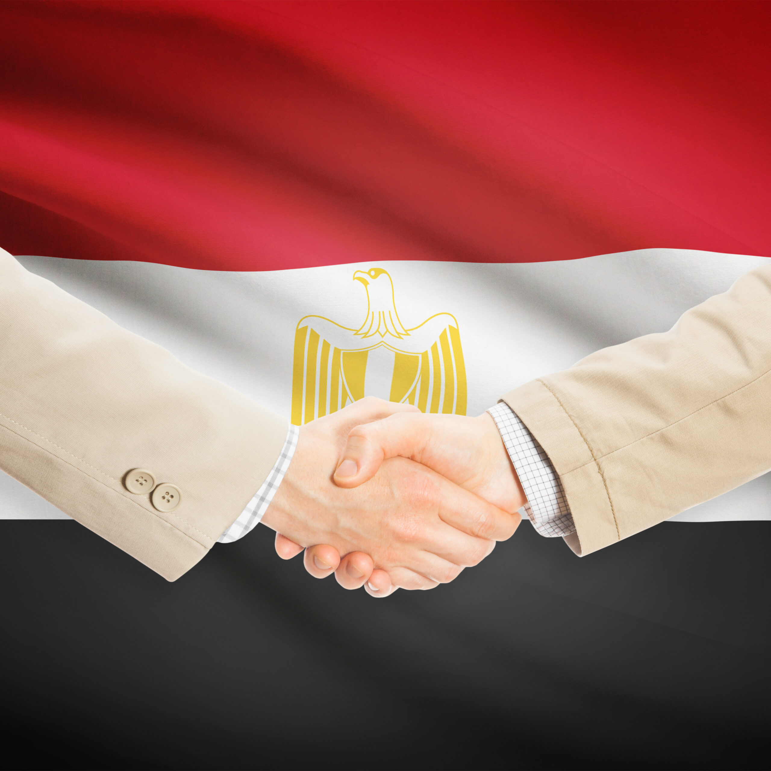 Businessmen shaking hands with flag on background - Egypt